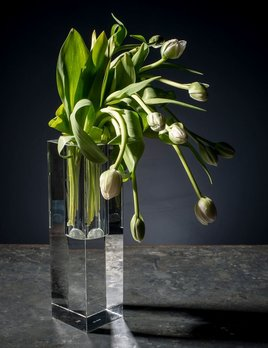 BECKER MINTY BECKER MINTY - Tall Wide Hole Vase - Crystal Glass - Clear - 10x10x35cm