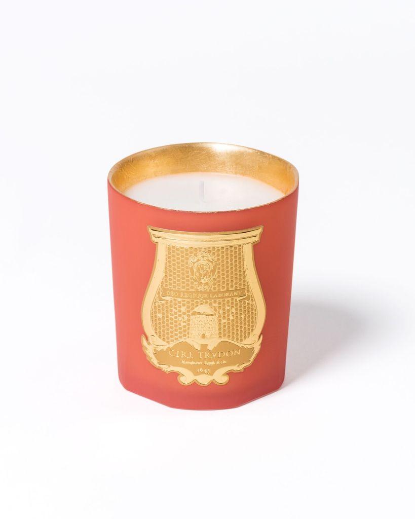 Cire Trudon Christmas Candle - Amon - Noël 2018 - Odeurs d'Egypte - 270g - 55-65 hours - France