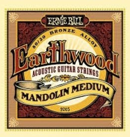 Ernie Ball Ernie Ball Earthwood Acoustic Guitar Strings Extra Light 10-50s