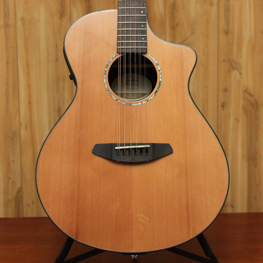 Breedlove Breedlove Solo Series 12-String Acoustic/Electric Guitar w/ Case