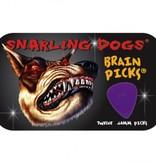Brain Picks 12 Pack .60mm