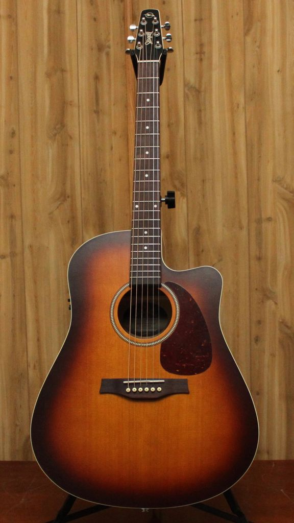 Seagull Seagull Entourage Rustic CW QIT w/Case