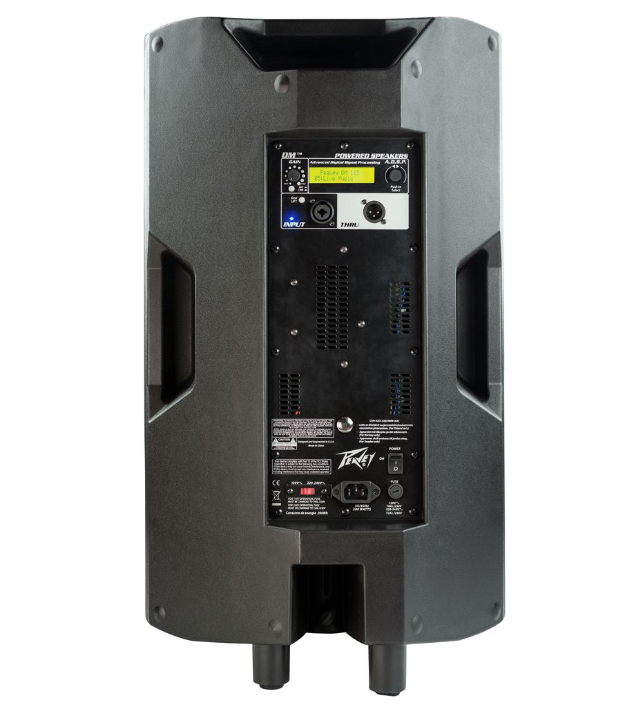 Peavey Peavey DM™ 115 120US