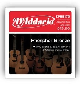 D'Addario D'Addario Acoustic Bass Long Scale Strings .045-.100