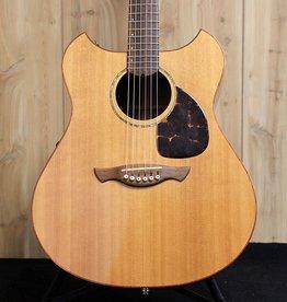 Used Wechter Pathmaker Acoustic Guitar w/ Case