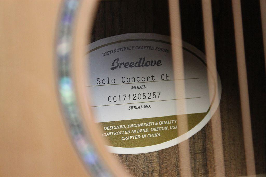 Breedlove Breedlove Solo Concert CE Red cedar-Ovangkol