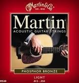 Martin Martin Acoustic LT 12-54