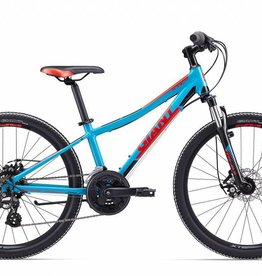 "2017 XtC Jr 1 Disc 24 24"" Blue/Red/Grey"