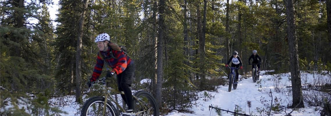 Icycle image 8