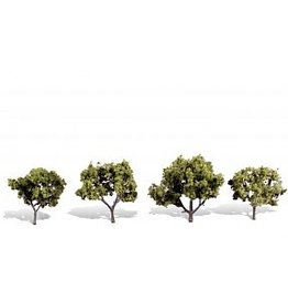 "WOO TR3503 Early Light Trees 2""- 3"" (4)"