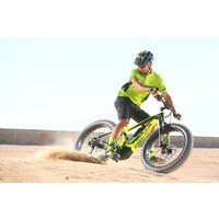 Monster E FS Electric Fat Tire Bike