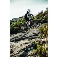 Delite Mountain Rohloff
