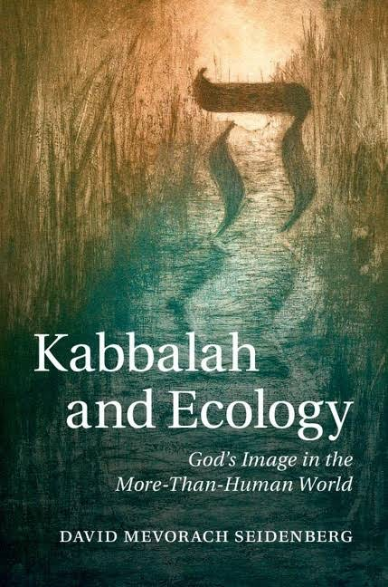 Kabbalah and Ecology: God's Image in the More-Than-Human World (Paperback) - David Mevorach Seidenberg