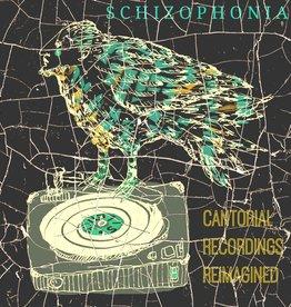Schizophonia - Yoshie Fruchter