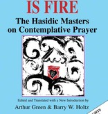 Your Word Is Fire: The Hasidic Masters on Contemplative Prayer - Arthur Green (Editor, Trans.), Barry W. Holtz (Editor, Trans.)