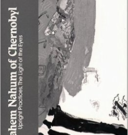 Upright Practices, The Light of the Eyes - Menahem Nahum of Chernobyl (Edited by Arthur Green)