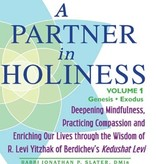 A Partner in Holiness Vol 1: Deepening Mindfulness, Practicing Compassion and Enriching Our Lives Through the Wisdom of R. Levi Yitzhak of Berdiche - by Jonathan Slater