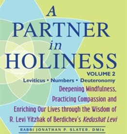 A Partner in Holiness Vol 2: Deepening Mindfulness, Practicing Compassion and Enriching Our Lives Through the Wisdom of R. Levi Yitzhak of Berdiche - by Jonathan P. Slater