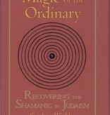 Magic of the Ordinary: Recovering the Shamanic in Judaism - Gershon Winkler