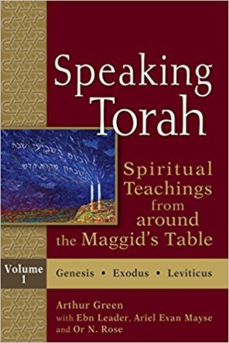 Speaking Torah Vol 1 (paperback): Spiritual Teachings from Around the Maggid's Table - Edited by Arthur Green, with Ebn Leader, Ariel Evan Mayse and Or N. Rose