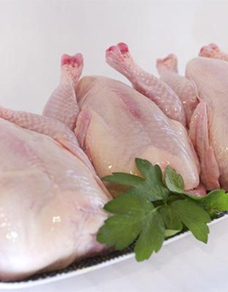 The Organic Butcher The Organic Butcher Cornish Game Hens - each