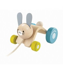 Plantoys Plantoys- Hopping Rabbit