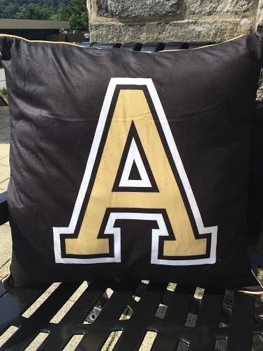 West Point Spirit Pillow (22 by 22 inches)