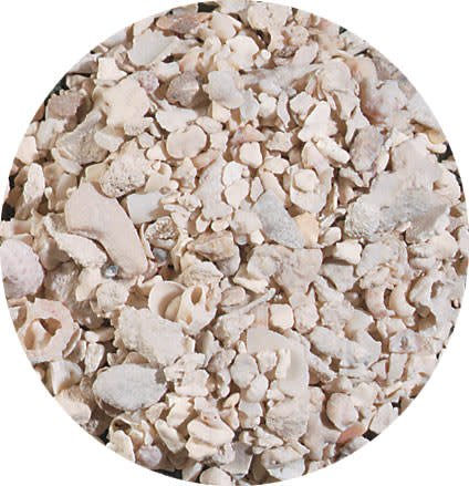 Caribsea Aragonite Alive Crushed Coral 20lb