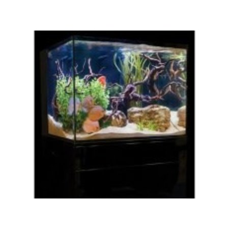 C-Vue 18g Aquarium Kit