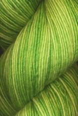 Araucania Araucania Nuble 105 GRASS
