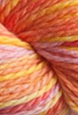 Cascade Cascade 128 Superwash Multi 106 CITRUS