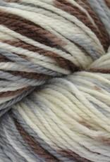 Brown Sheep Brown Sheep Prairie Spun DK 230 SNOWY THICKET