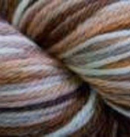 Cascade Cascade 220 Superwash Sport Multi BROWNS 107