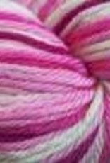 Cascade Cascade 220 Superwash Sport Multi PINKS 101