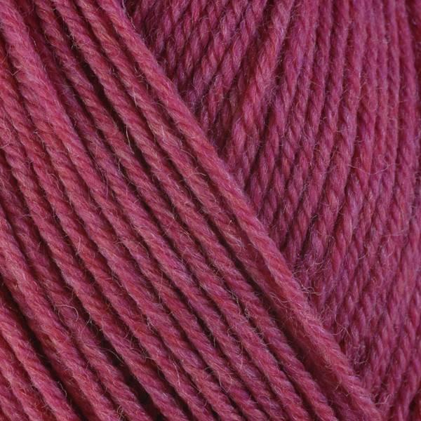 Berroco Berroco Ultra Wool Superwash 33148 PEONY