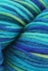 Cascade Cascade 220 SuperWash Paints 9862 SEAS