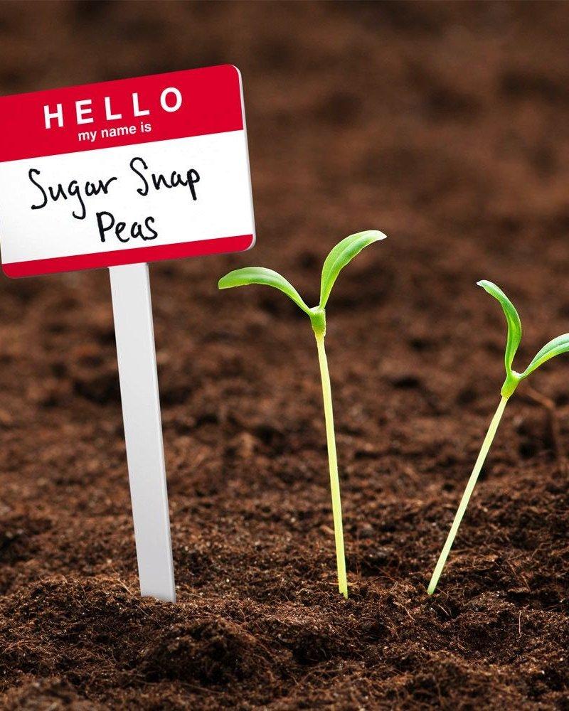Marcadores para jardinería hello