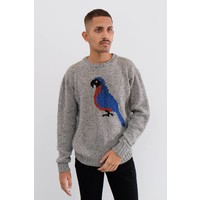Parrot Life Sweater