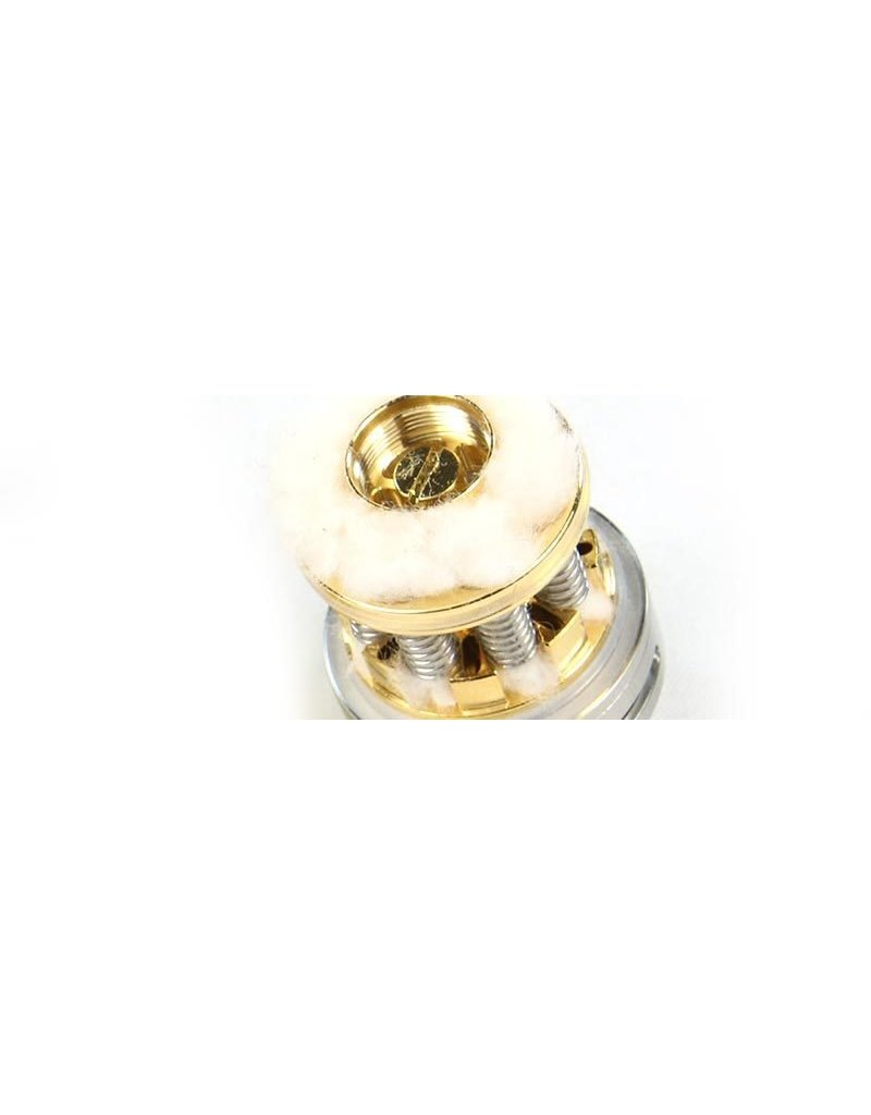 Envii Envii - Terra RTA Replacement Coil - 20 Pack