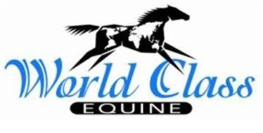 World Class Equine