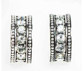 Crystal Ring Show Earrings