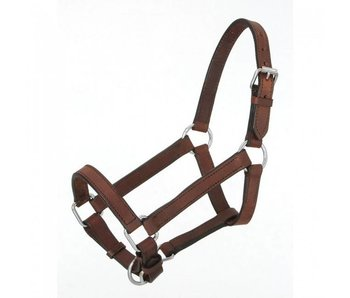 Miniature Leather Halter