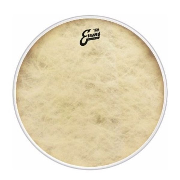 "Evans Evans Calftone 20"" Bass Drumhead"
