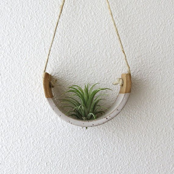 Muddpupy Mudpuppy Hanging Planter
