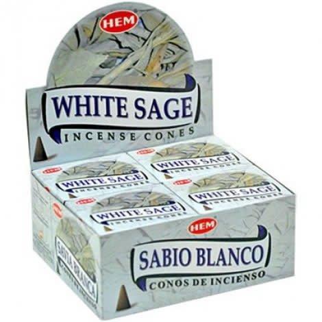 Hem 10pc Cones White Sage