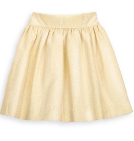 Gold Party Skirt
