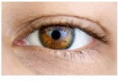 March is National Vision Awareness Month - Lutein, Zeaxanthan, Bilberry, Glutathione