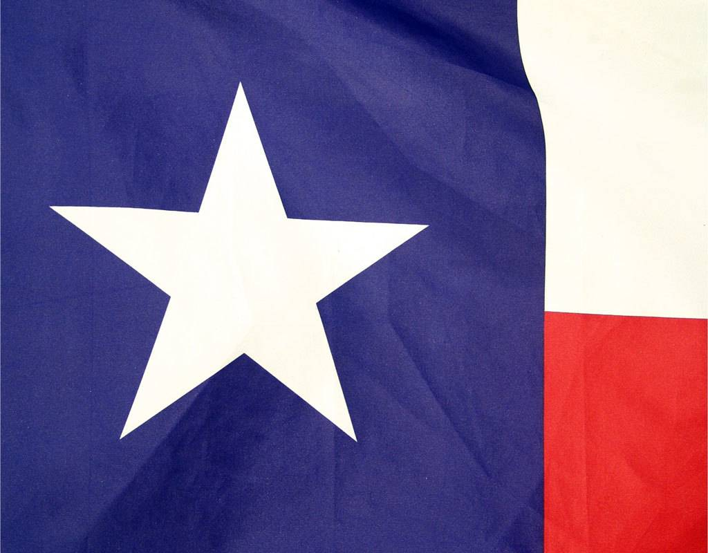 Online Stores Flag - Texas 3'x5'