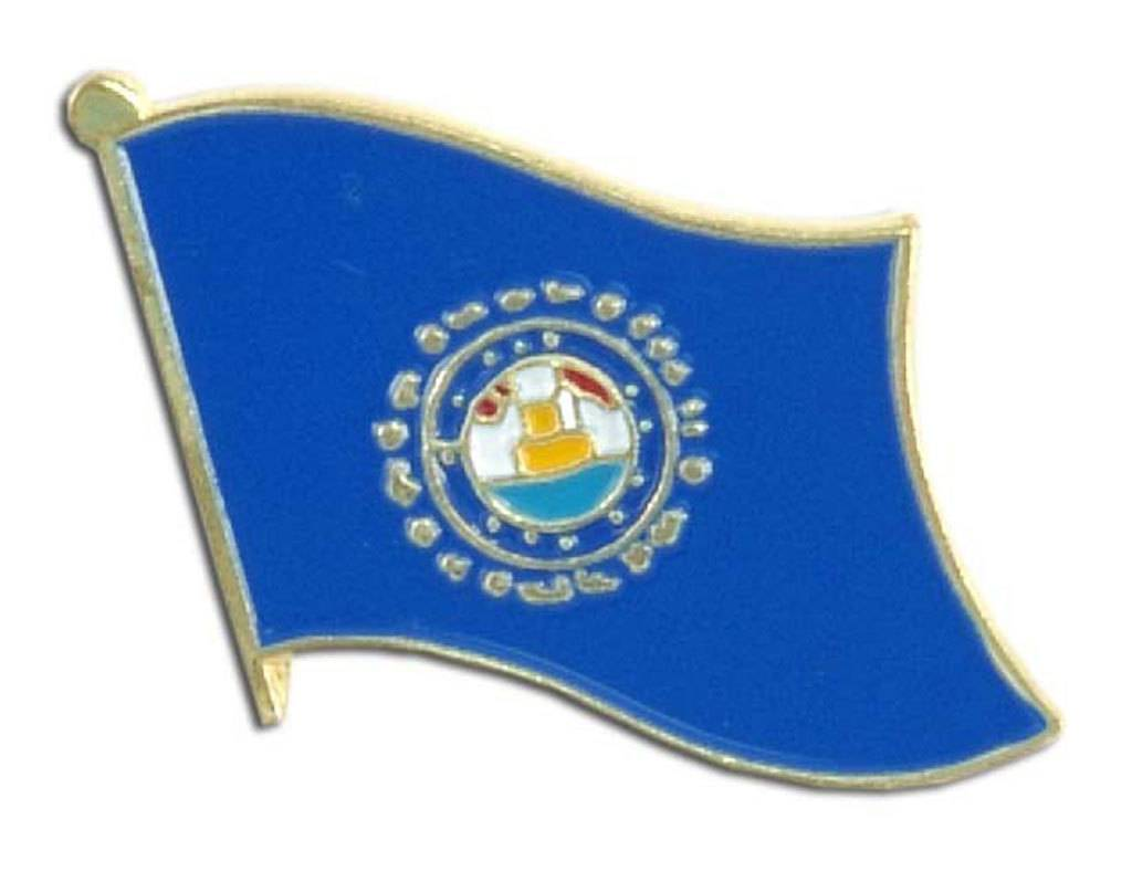 Online Stores Lapel Pin - New Hampshire Flag
