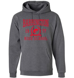#103 Heavyweight Cotton Hooded Sweatshirt - BHS Reunions